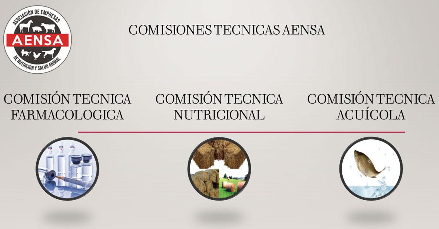 Comisiones Técnicas AENSA